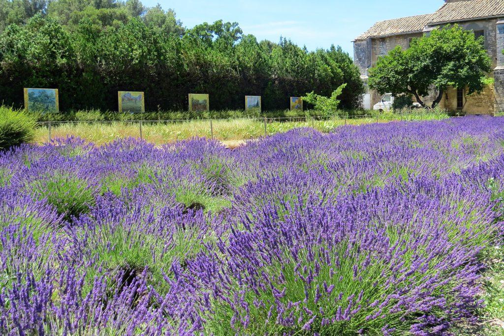 Saint-Rémy-de-Provence - St-Paul de Mausole